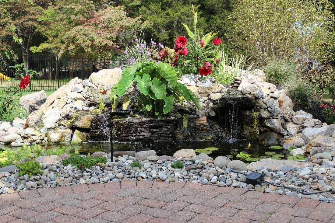 Pond & Bog Build, Branchburg, NJ