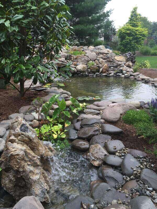 Pond & Bog Build, Piscataway, NJ