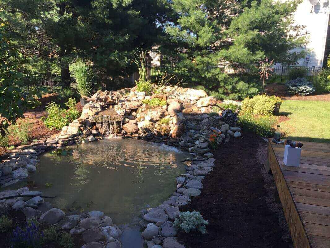 Pond & Bog Build, Piscataway, NJ