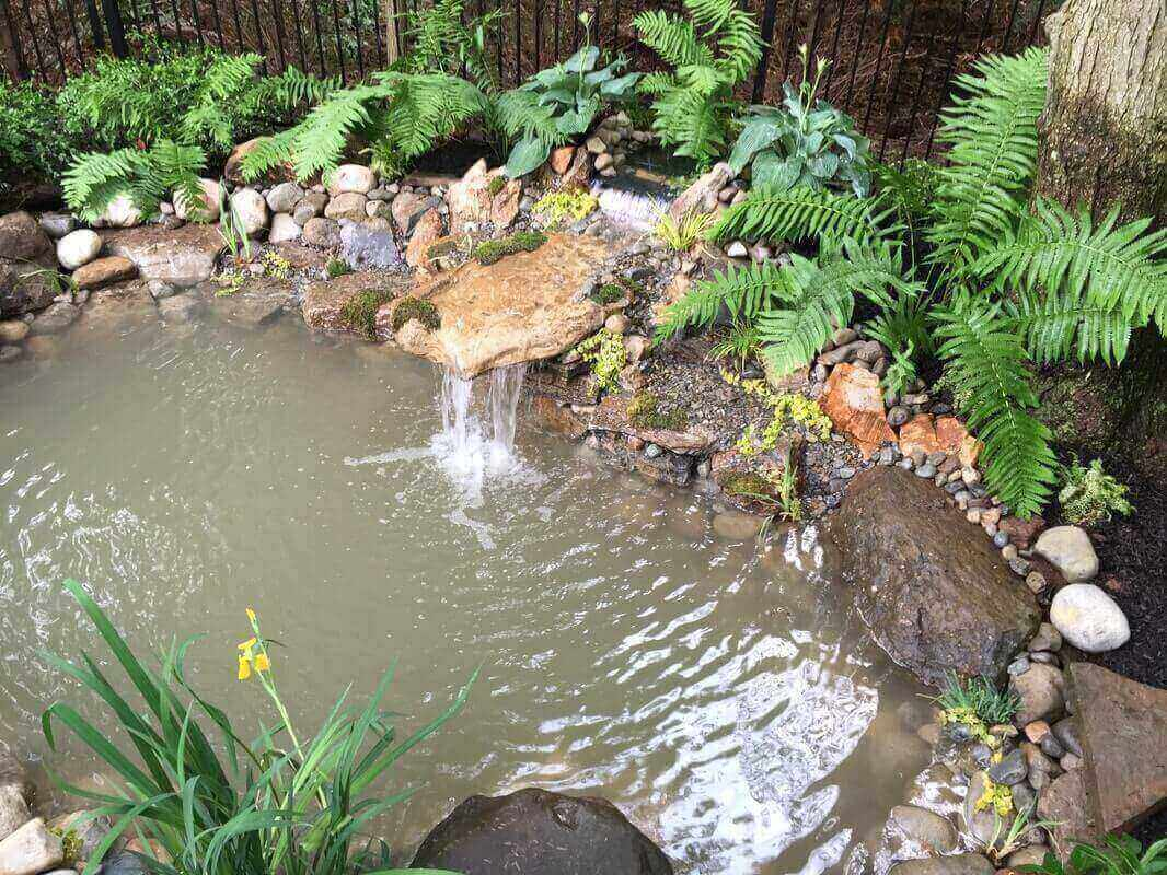 Small Pond Build, Westfield, NJ