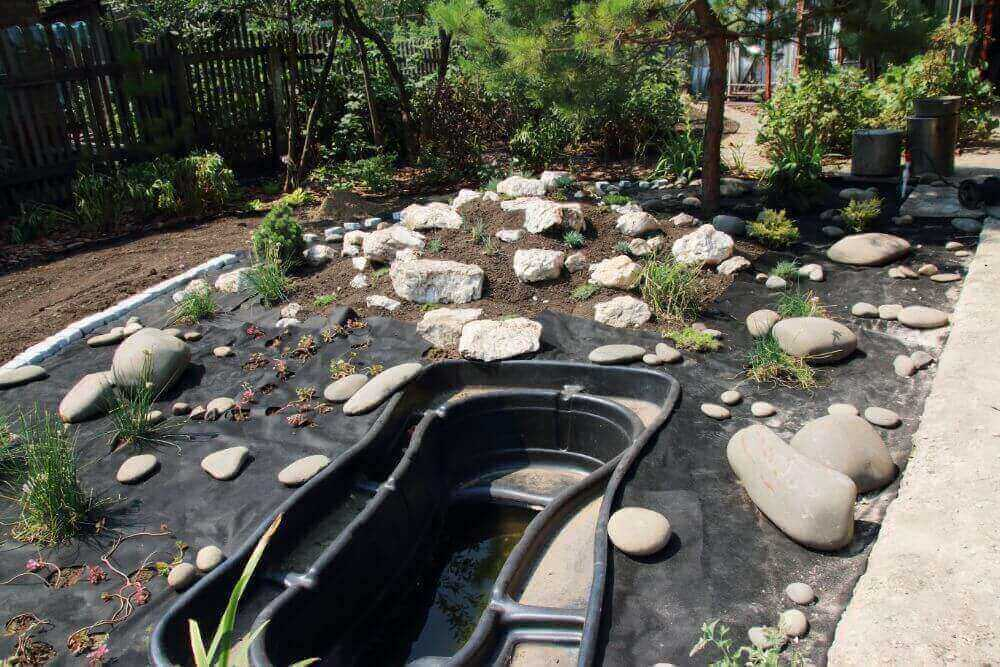 A Step-By-Step Guide On Building A Pond