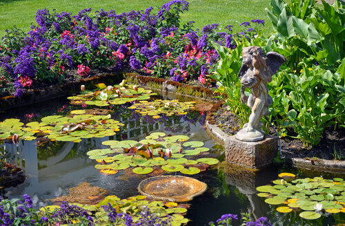 Are Submerged Plants Good For Your Pond?