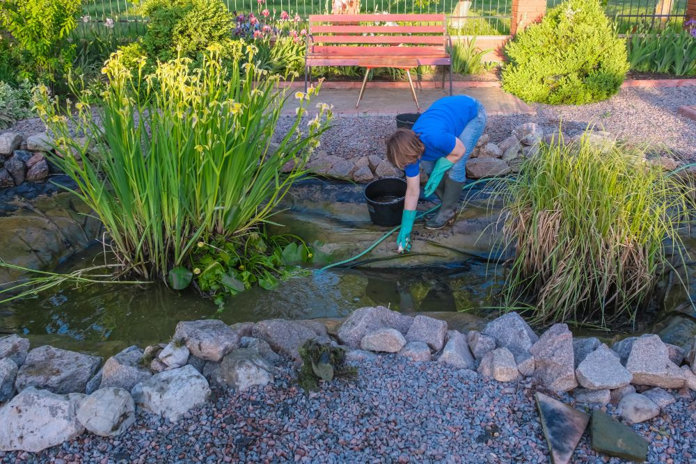 Don't Neglect These Fall Pond Maintenance Tasks!