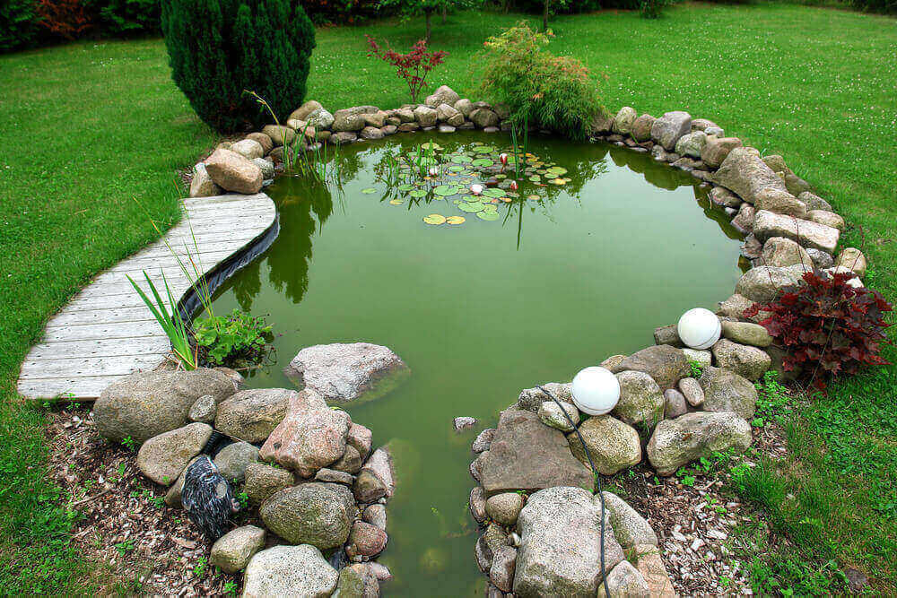 How Ponds Benefit From Pre-filtration