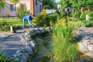 Important Tips To Keep Your Pond Water Clean And Clear