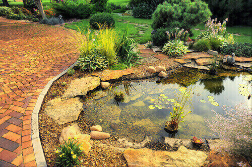 Is Your Pond Ready For The Fall Season?