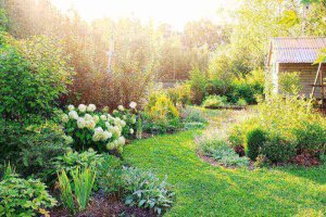 Landscaping Tips For Using Flowers
