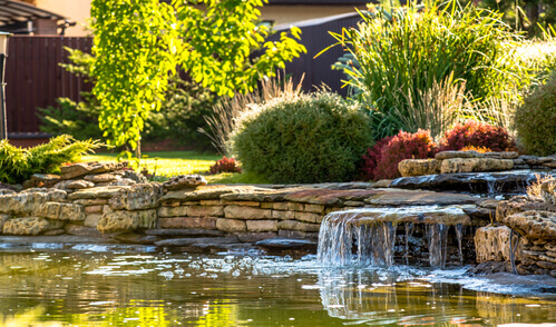 Quick Tips For Your First Pond Landscaping Project