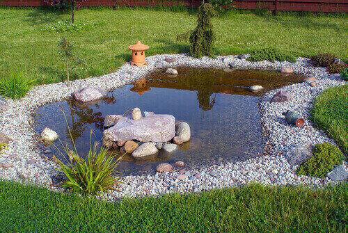 The Purpose of Ultraviolet Pond Lights