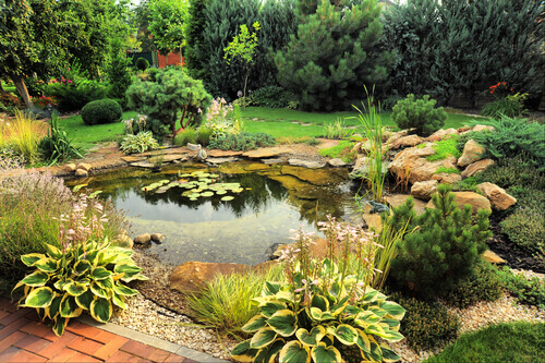 What Is The Best Pond Depth?