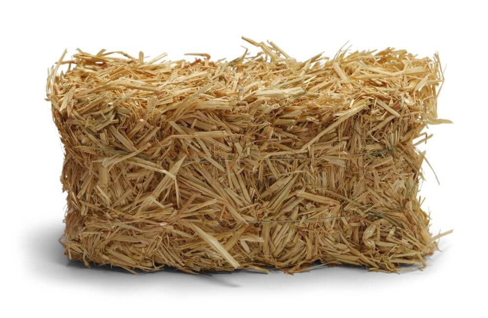 Why You Should Garden Using Straw Bales