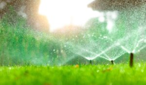 Why You Should Not Deactivate Your Irrigation System During Rainy Season