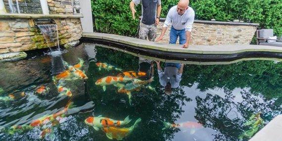 Formal Pond Built in Fort Lee