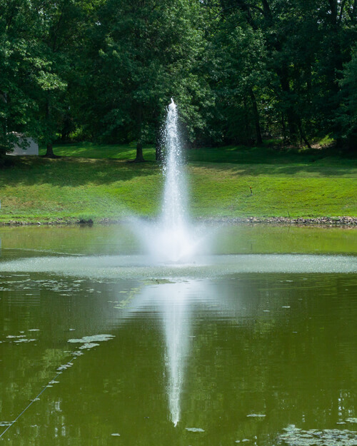 Fountain Services
