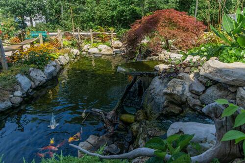 Natural Ponds 2