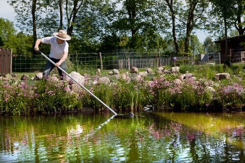 Pond Cleaning Isn't As Easy As You Think!