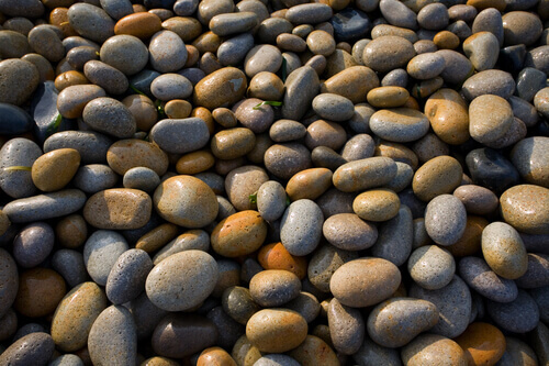 Tips For Using Pebbles In Your Pond