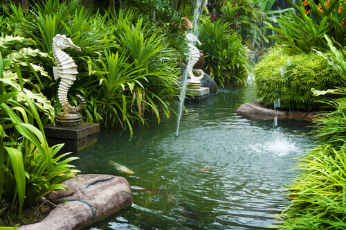 Top Reasons Why People Get Water Features