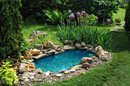What It Takes To Winterize A Water Garden