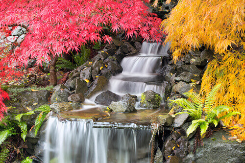 Is Your Waterfall Feature Aerating Your Water Garden Well?